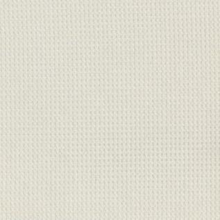 AR03 White