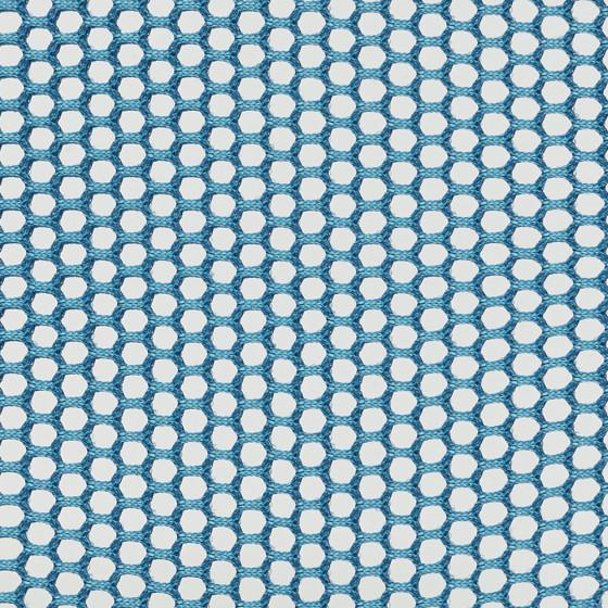 Blue Jay 15