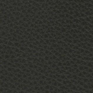 Europe0286 Dark Grey