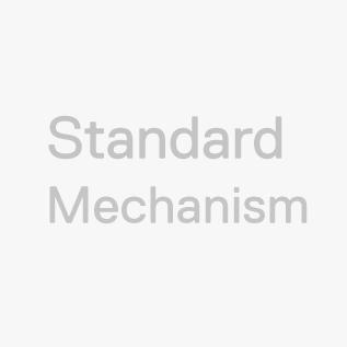 Standard Mechanism