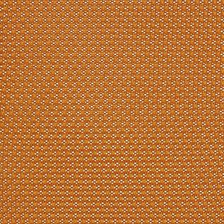 Tangerine 5 T27