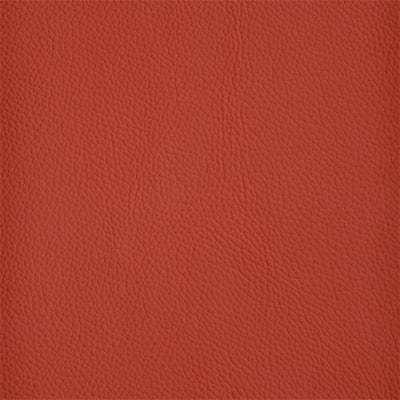 41 Shelly Crimson 400px