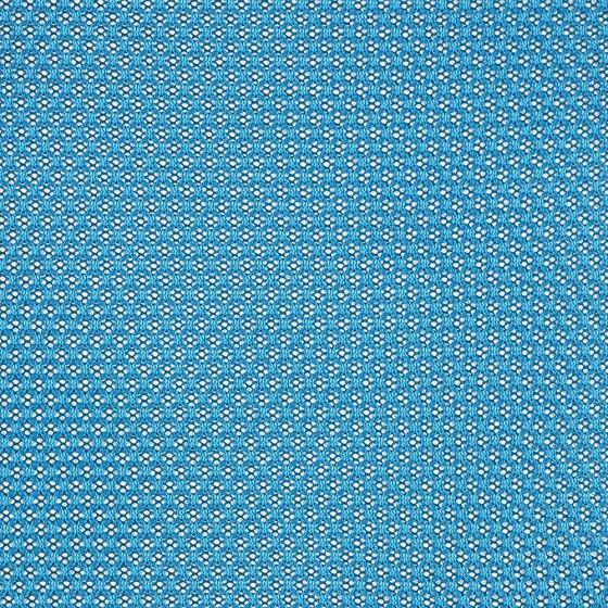 5 T23 Blue Jay