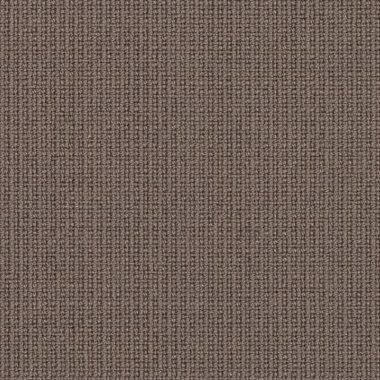 8017 Mocca