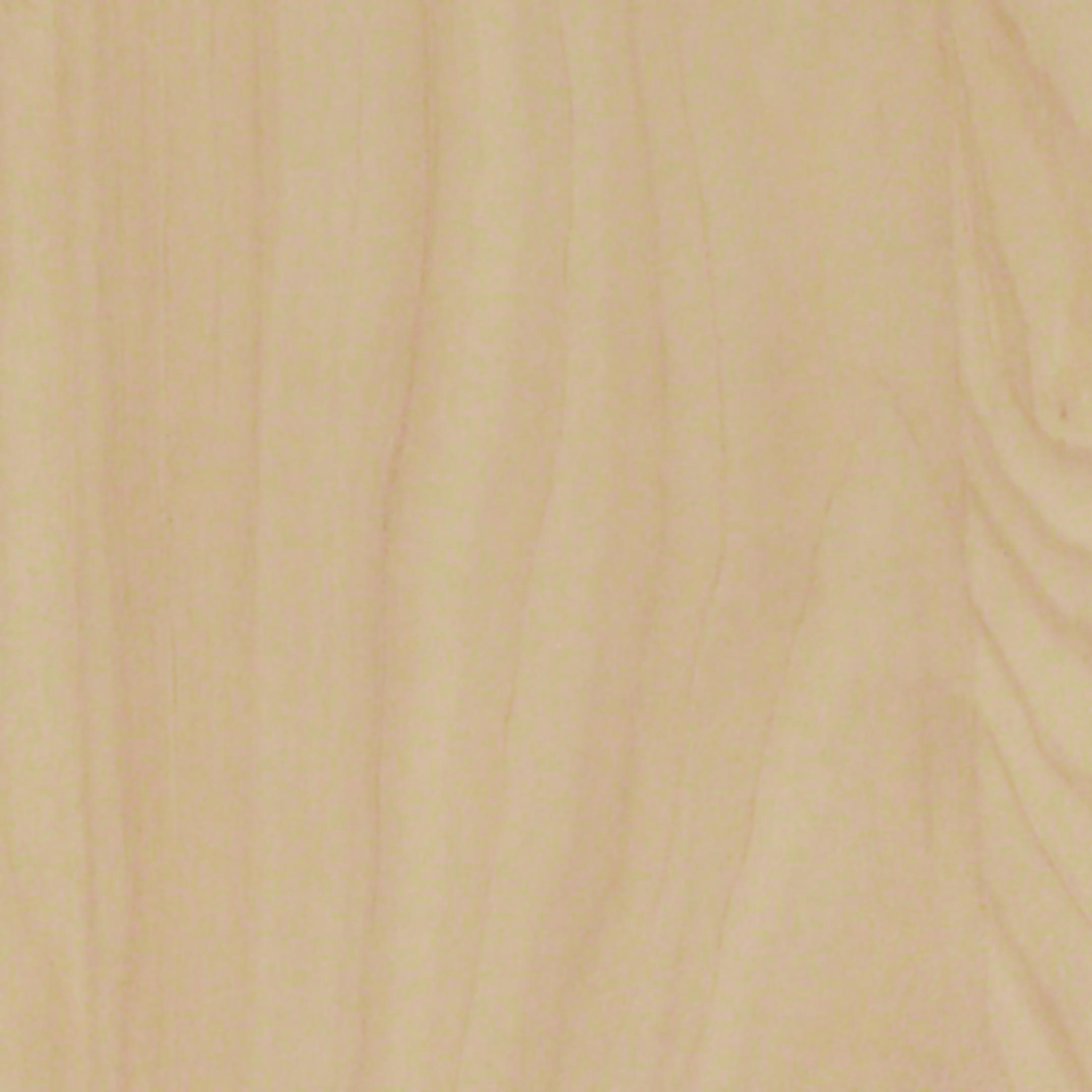 Birch Wood 1611