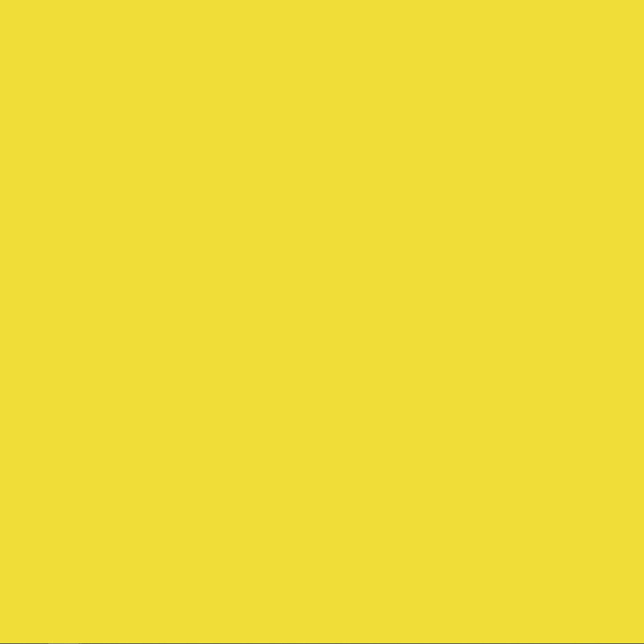Fluo Yellow RAL 1016