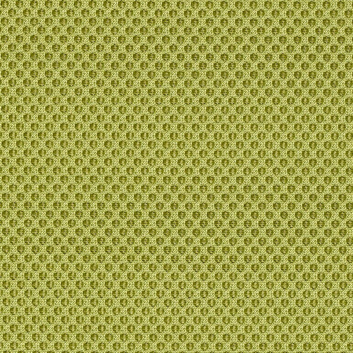 RR05 Light Green