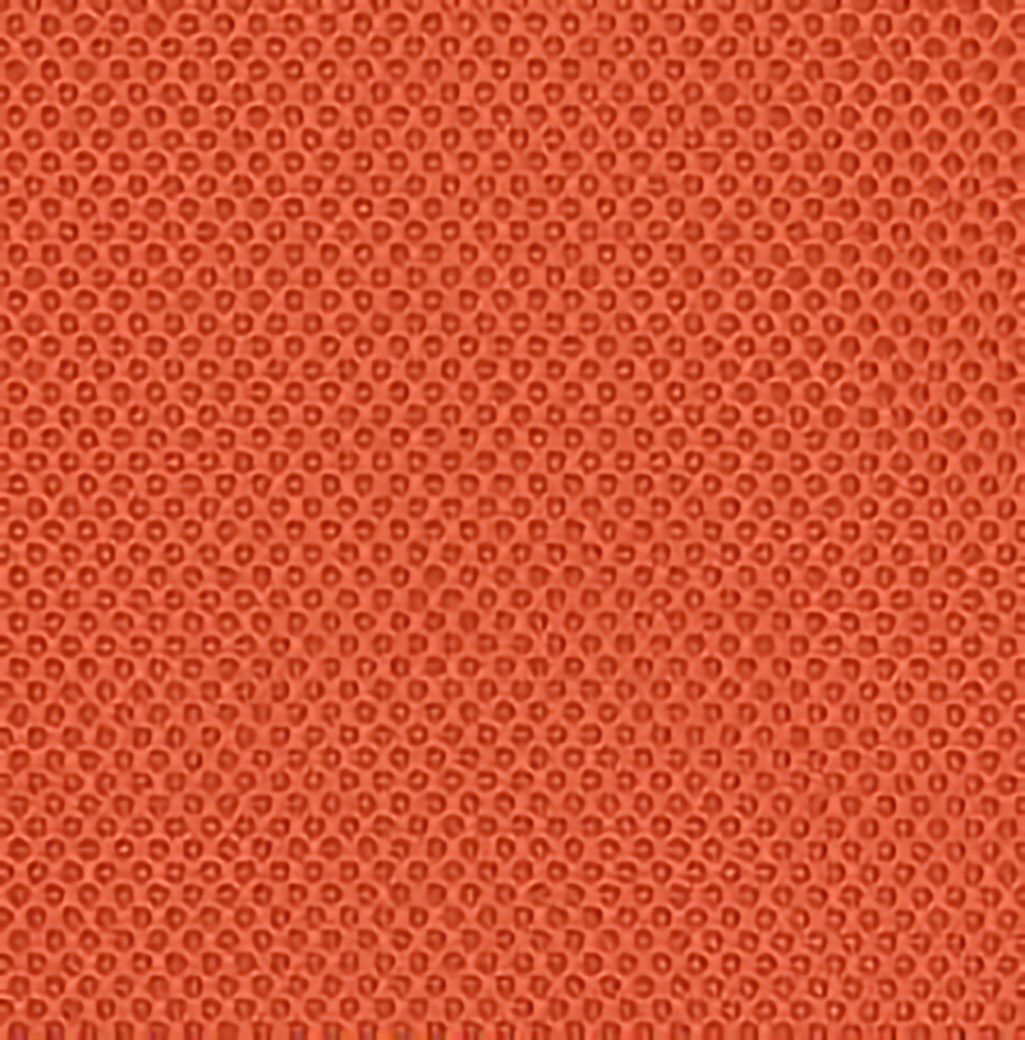 RR06 Orange