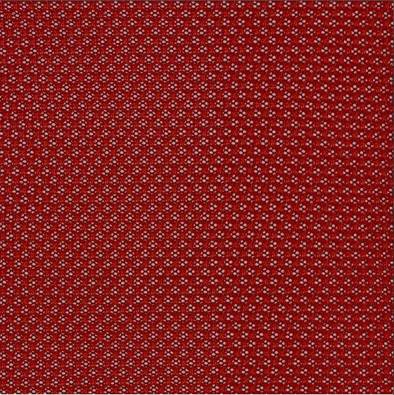 Scarlet 5 T24