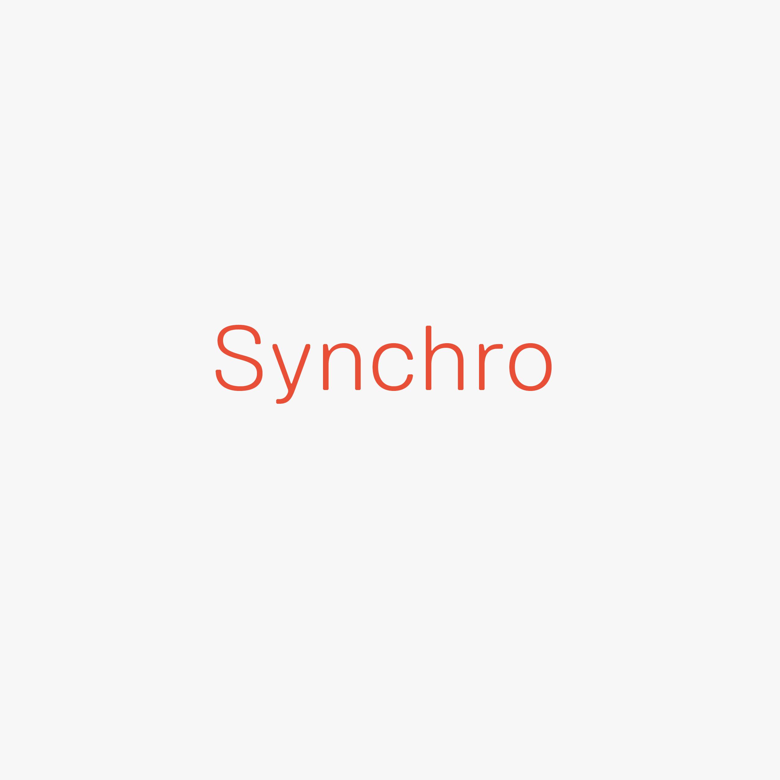 Synchro Mechanism Web On