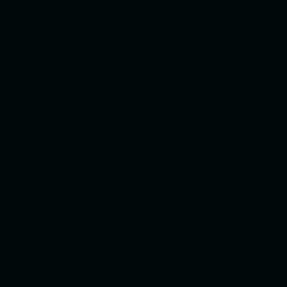 Polaris noir pol 2902